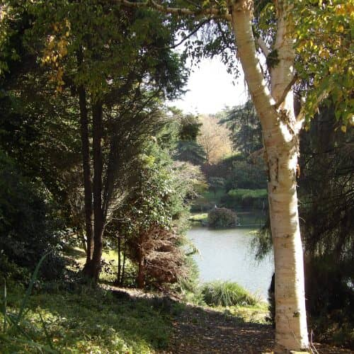 Explore Marwood Gardens in Barnstaple for a great family day out in North Devon.